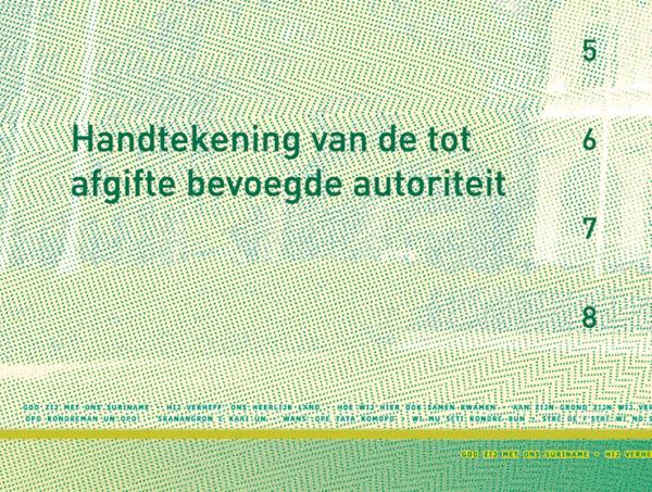 6500 Kelvin Detail rijbewijs Suriname