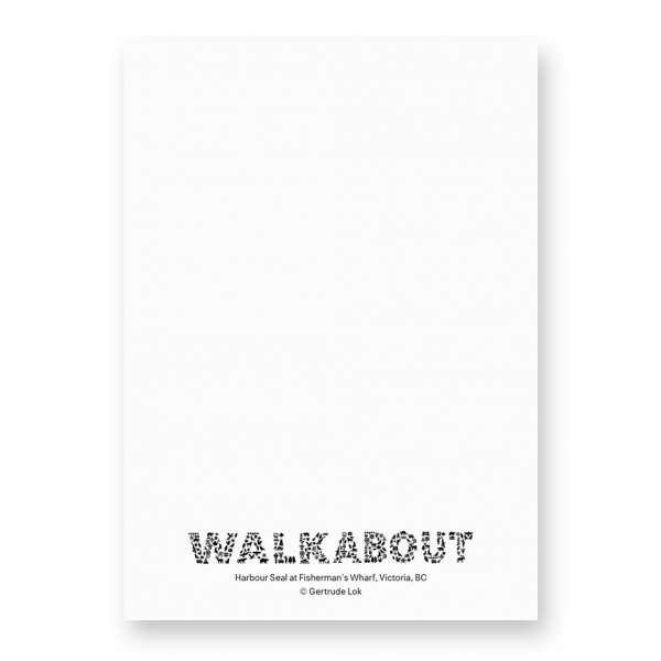 6500 Kelvin Walkabout Notecard back